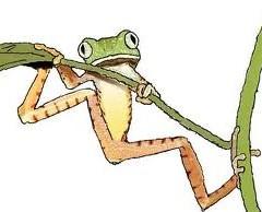 La fête à la grenouille?
