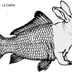 La carpe et le lapin