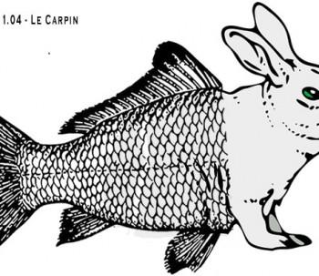 mariage-de-la-carpe-et-du-lapin (1)