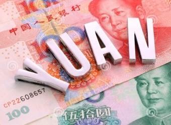 yuan (2)