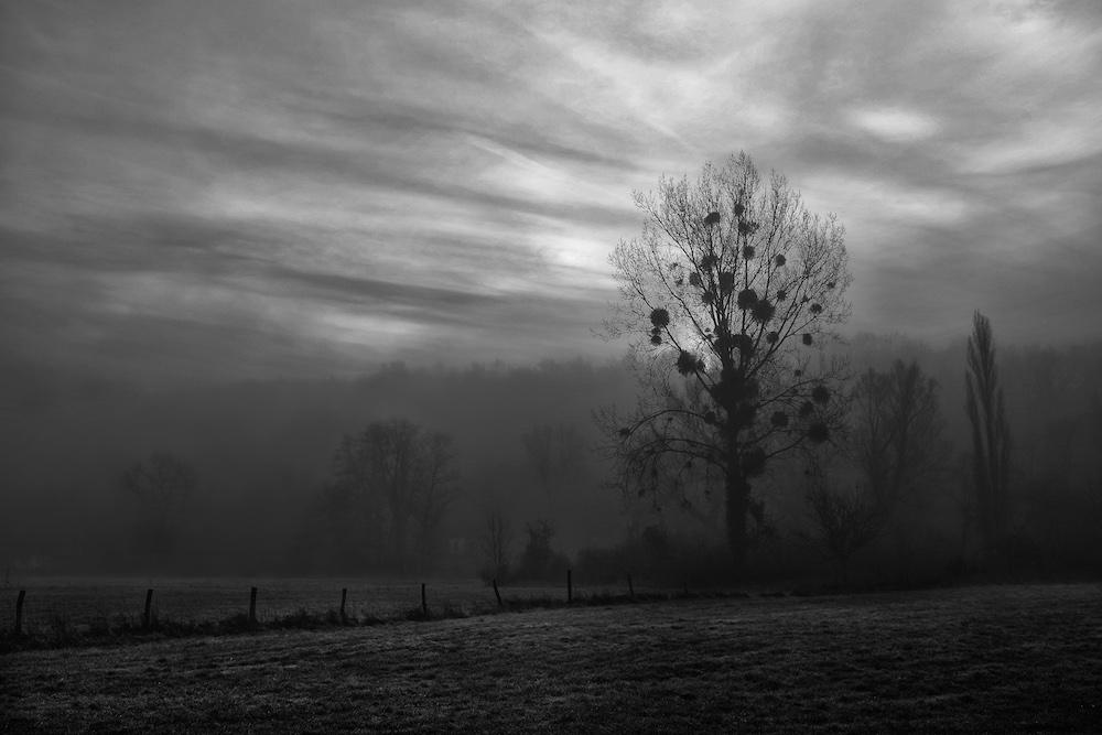 Le crépuscule des démagogues