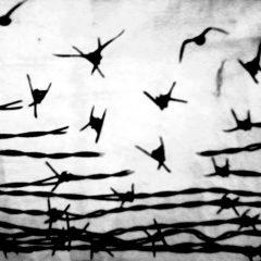 """""""Mal nommer les choses, c'est ajouter aux malheurs du monde."""" (Albert Camus)"""